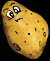 Kartoffel_klein